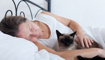 Why Does Your Cat Wakes You Up At Night?