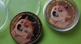 Profit Is Obtained When You Invest In Dogecoin Stock