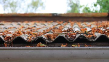 The cost for local gutter cleaning