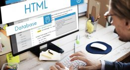 Functional Aspects of the Small Business Web Designers