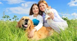 What is preventive animal care? Why we need this
