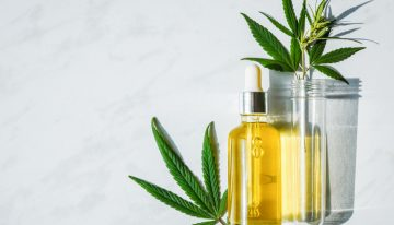 Effects of CBD Oil On Kidneys – Know How Does It Promote Healthy Kidneys